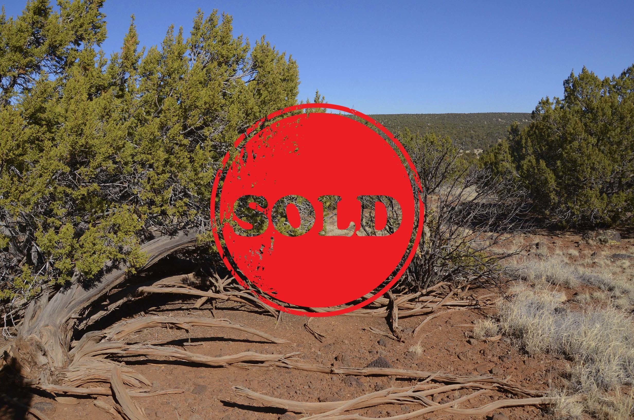 Sold Listings Land Paradise